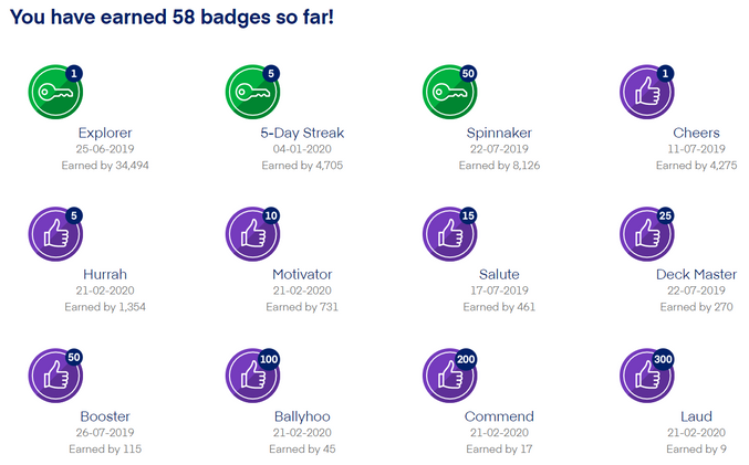 Ranks and Badges.png